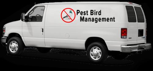 bird pest control van