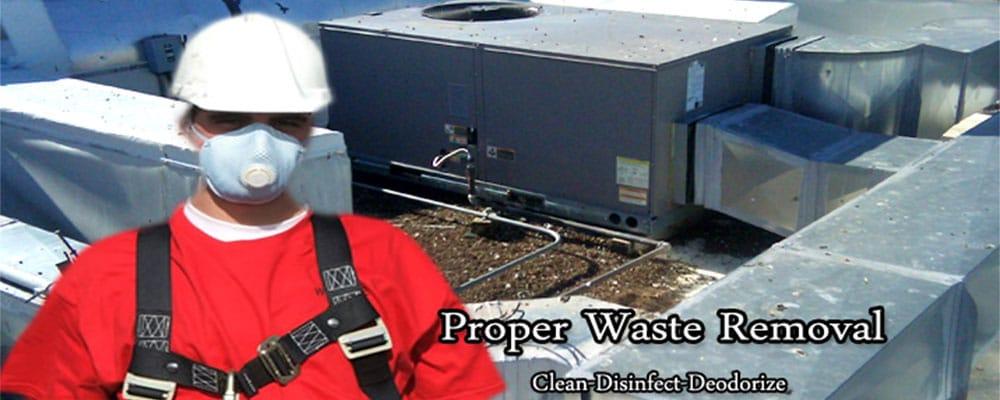 Proper waste removal